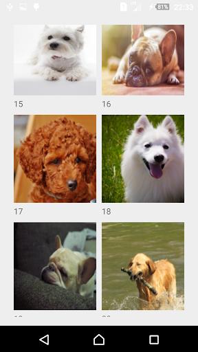 puzzle! puzzle! dog screenshot 3
