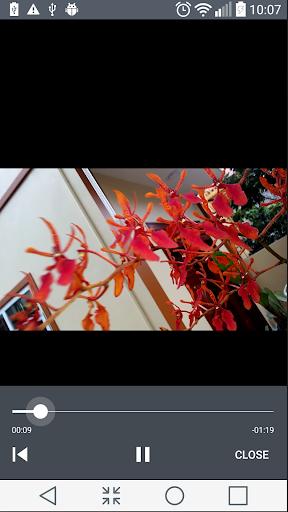 MP4 Video Cutter 5.0.4 Screenshots 6