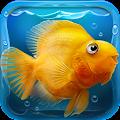 iQuarium - virtual fish APK