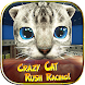 Crazy Cat Rush Racing Run Kitty Craft - Androidアプリ
