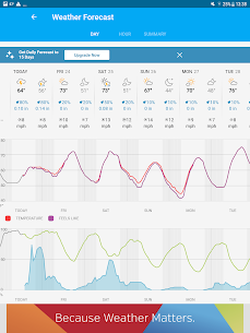 Weather data & microclimate : Weather Underground 20