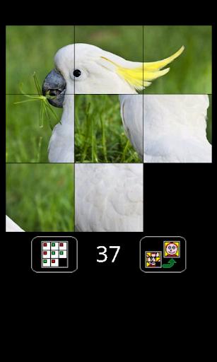 puzzle joe screenshot 3