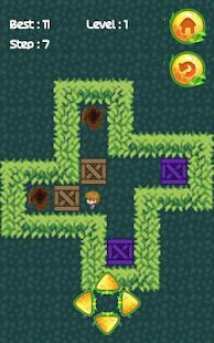 Push Box Garden Puzzle Games: Sokoban Puzzles