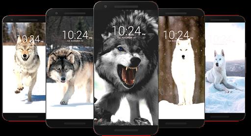 Wolf Wallpaper HD 13 Screenshots 21