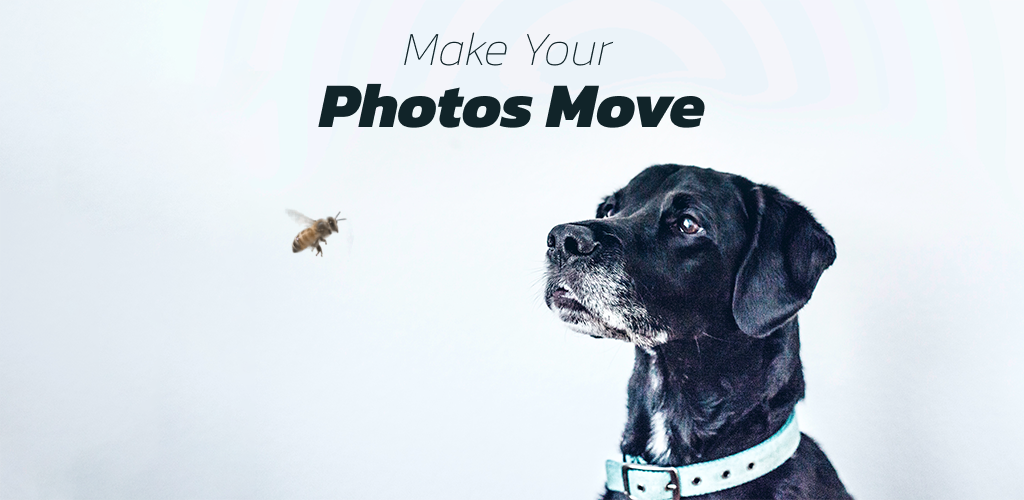 VIMAGE: Cinemagraph & Motion Picture Animation App poster 0