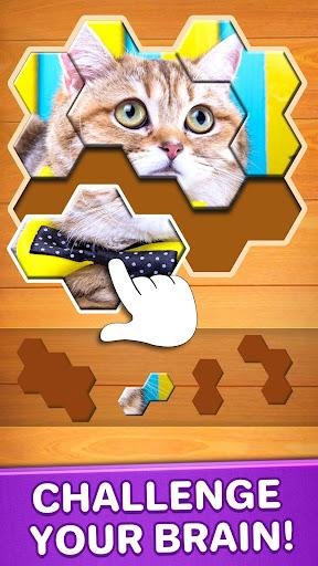 Jigsaw Puzzles Hexa 🧩🔥🎯 2.2.5 screenshots 1