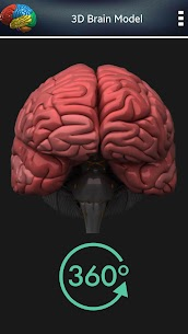 3D Human Brain + For Pc (Free Download – Windows 10/8/7 And Mac) 1