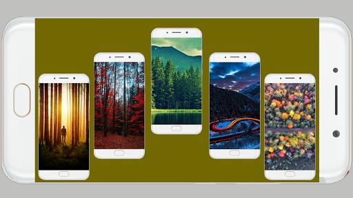 Forest Wallpaper HD Screenshots 2