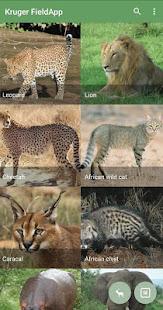 Kruger National Park FieldApp Lite