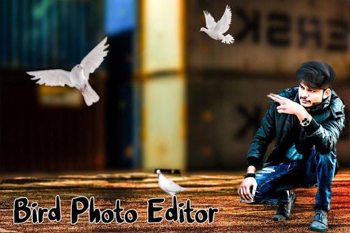 Bird Photo Editor android2mod screenshots 7