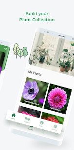 LeafSnap – Plant Identification 5