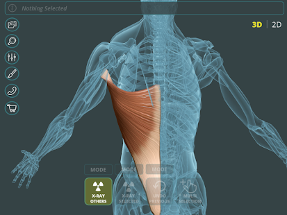 Visual Anatomy 3D | Human 1.2 Screenshots 17