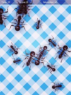No More Ants (free) - squash