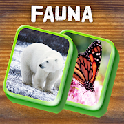 Mahjong Animal Tiles: Solitaire with Fauna Pics