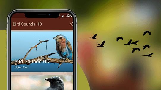 Bird Sounds – Nature Bird Calls & Ringtones 2