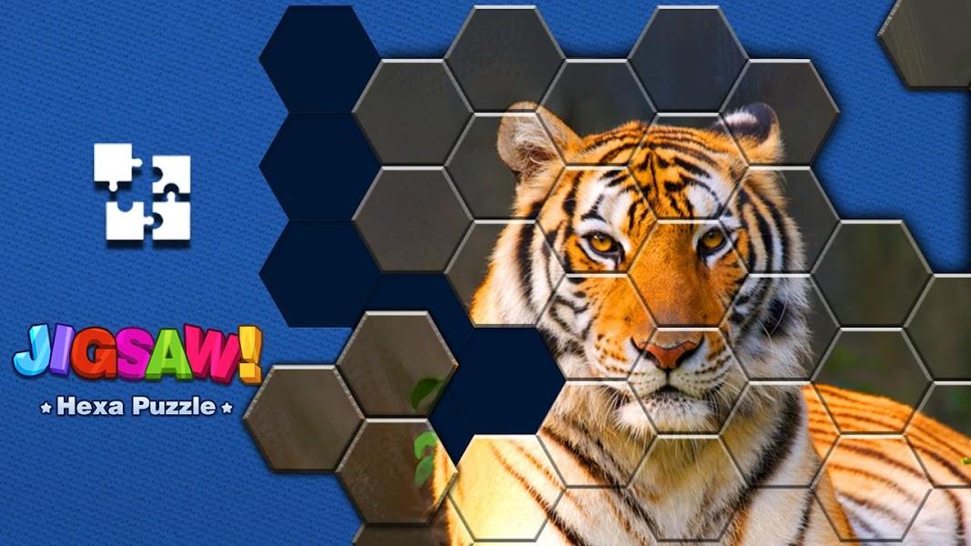Jigsaw Puzzle - Hexa Block Puzzle