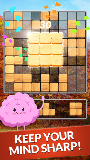 Blockscapes Sudoku modiapk screenshots 1