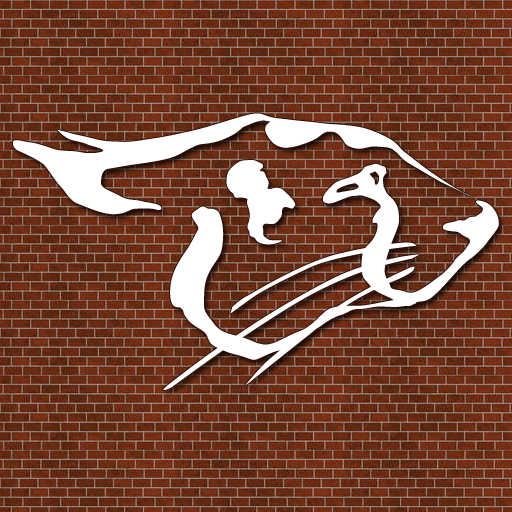 Cheetah Gym icon