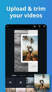Free Canva Pro APK 2.93.0(Mod, Premium, Logo Maker, Media kit) 2