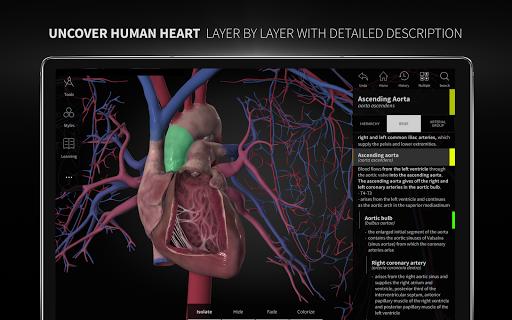 Anatomyka - 3D Human Anatomy Atlas 2.1.5 Screenshots 11