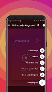 Bird Sounds Ringtones Free