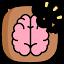 BrainCracker icon