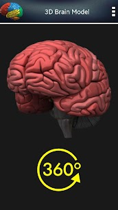3D Human Brain + For Pc (Free Download – Windows 10/8/7 And Mac) 2
