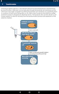 Molecular Methods