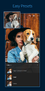 Adobe Lightroom v6.1.0 Mod APK 2