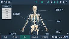 人体 (男)インタラクティブな教育用3Dのおすすめ画像3