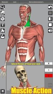 3D Anatomy APK (Paid) 1