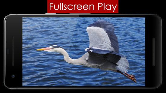 Play Lite 5.4 Screenshots 5