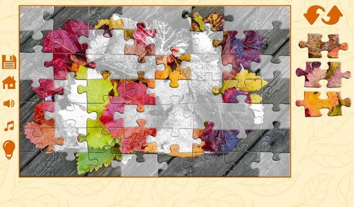 Puzzles autumn 1.2.5 screenshots 5