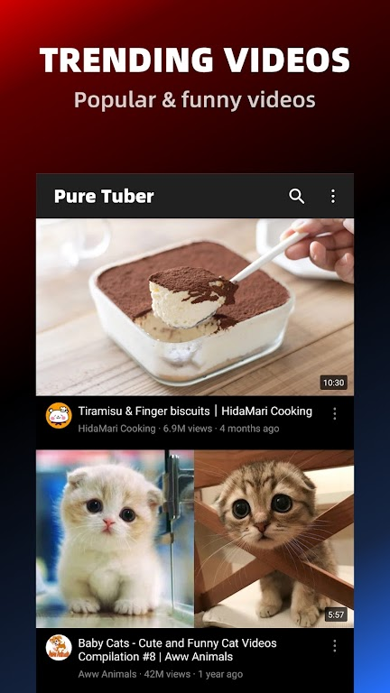 Pure Tuber - Block Ads for Video, Free Premium poster 17