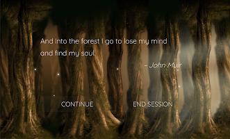 Enchanted Forest Meditation