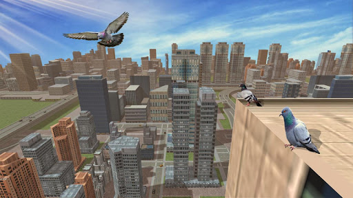Wild Pigeon Bird City Simulator  Screenshots 9