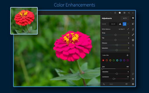 Adobe Lightroom - Photo Editor & Pro Camera 6.1.0 screenshots 11