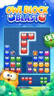 Owl Block Blast-Free Puzzle Games 1.1.1 screenshots 1