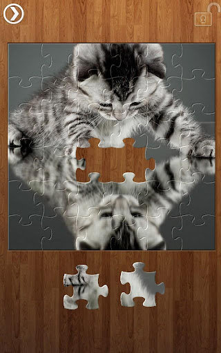 Reflection Jigsaw Puzzles 1.9.17 screenshots 9
