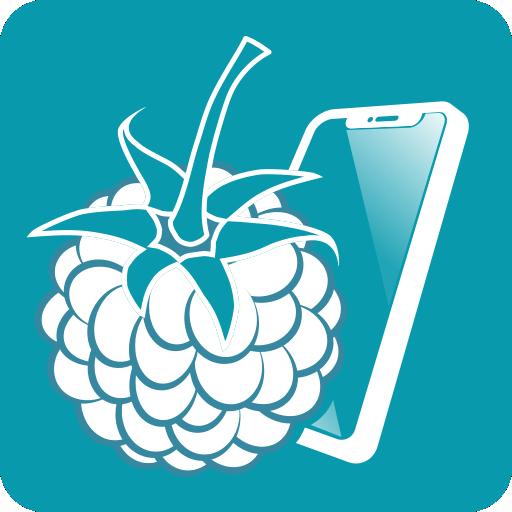 Las Mejores Aplicaciones para Raspberry Pi 3 Gratis