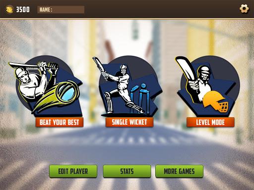 Street Cricket Games: Gully Cricket Sports Match 4 screenshots 8
