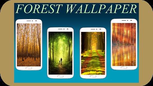 Forest Wallpaper HD Screenshots 1