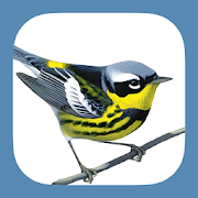 App Icon for Sibley Birds 2nd Edition App in Thailand Play Store