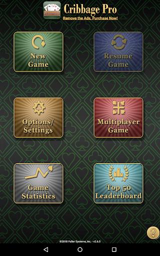 Cribbage Pro apkdebit screenshots 6