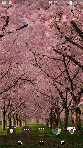 Spring Cherry Blossom Live Wallpaper FREE 1.05 screenshots 4