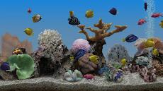 Marine Aquarium 3.3 PROのおすすめ画像1