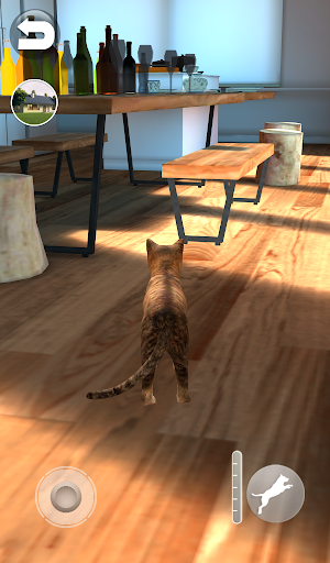 Talking Somali Cat 1.0.6 screenshots 9