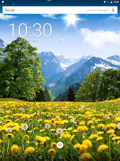 Summer Dandelion Live Wallpaper FREE