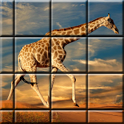 Jigsaw puzzle games, logic games