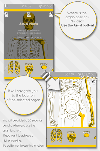 Enjoy Learning Anatomy puzzle 3.2.3 screenshots 3